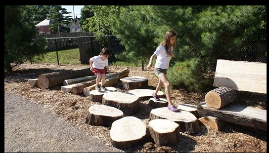 Log Steppers - Nature Play
