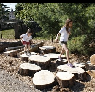 Log Steppers - Nature Play.png