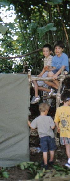 Zomer 2003