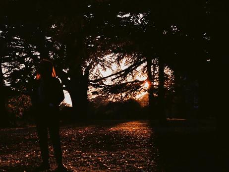 🍁 Autumn