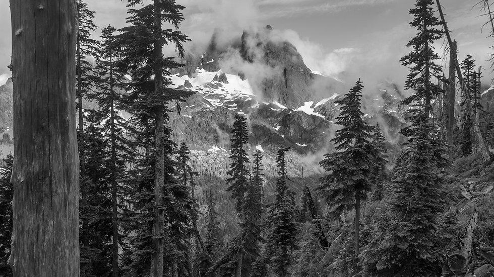 North Cascades National Park II