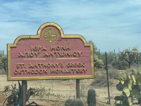 Paradise in the Sonoran Desert