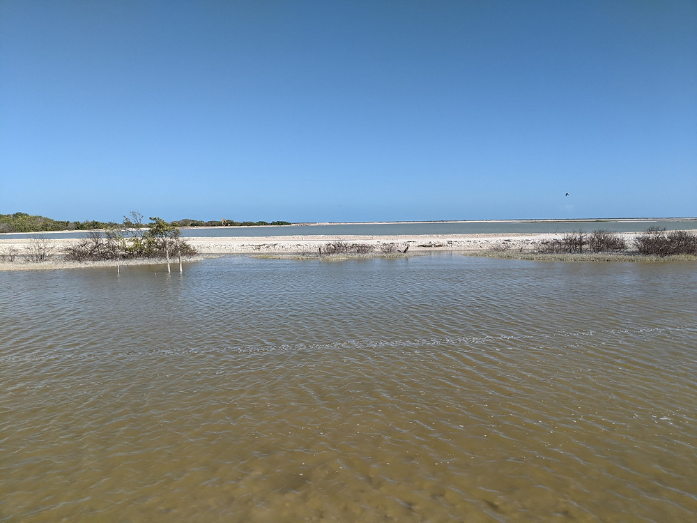 Los Colorados. The Pink lake. Yucatan. Maya salt deposits