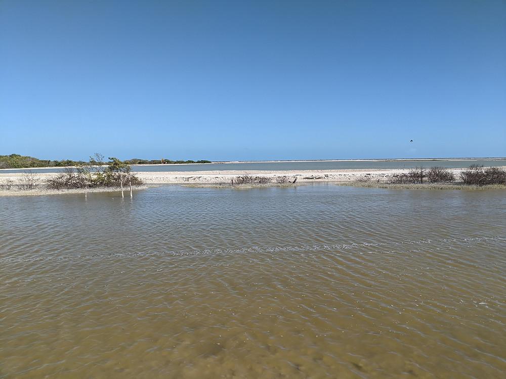 Los Coloradas Yucatan. Pink Lakes. Rausvieji ežerai Jukatanas