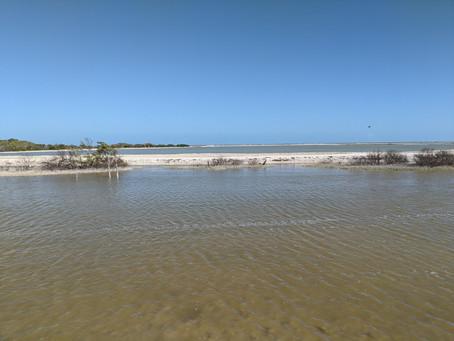 Los Coloradas/ Rausvieji ežerai. San Felipe ir kelionė atgal į Vajadolidą
