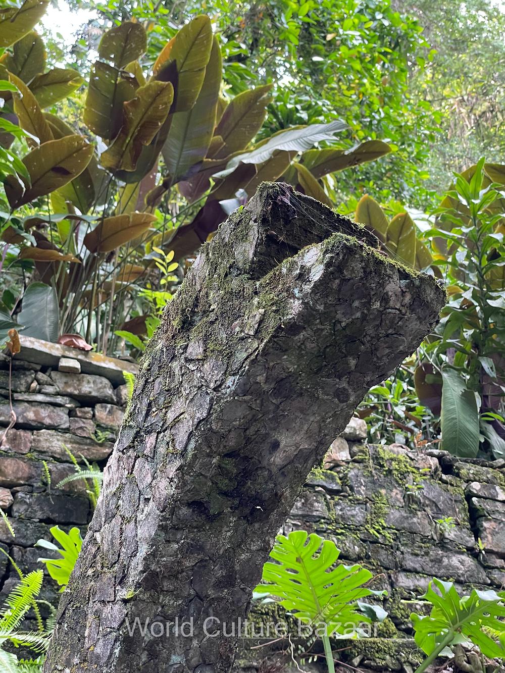Xilitla. Las pozas. Edward James. Surrealistic garden