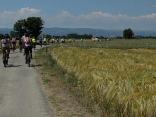 Retour sur la Journée du vélo