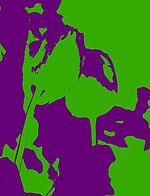 PopArt Poppies (1) Green & Purple IMG_70