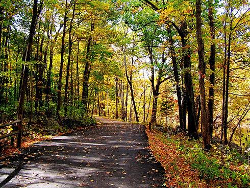 Fall_Trail.jpg