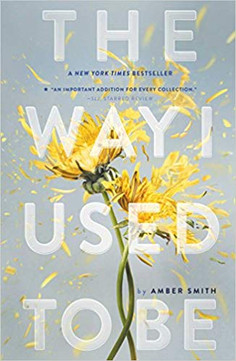 Book Review: The Way I Used To Be
