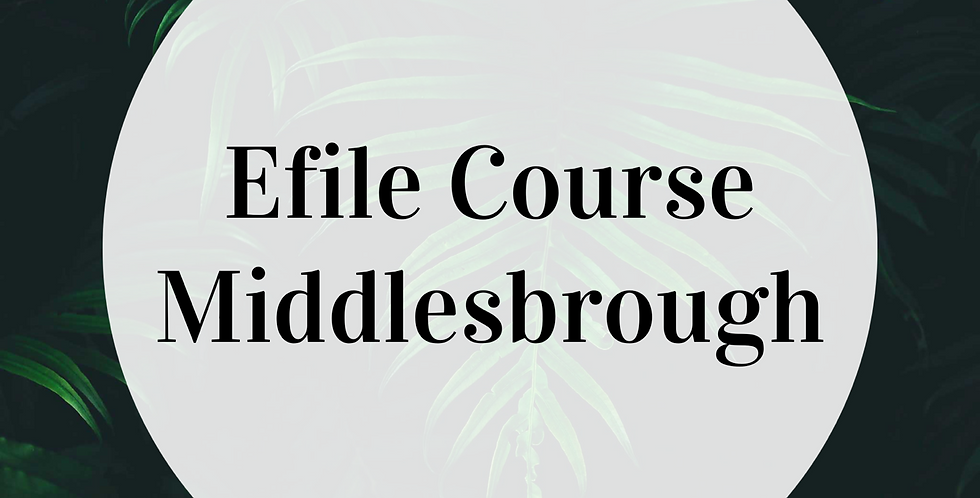 Willow Efile Course - Middlesbrough