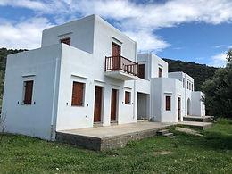 Villa Green Olive