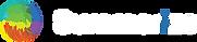 logo-summerize-wp.png