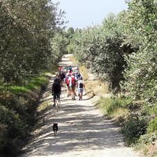 Wandeling  Pirgos