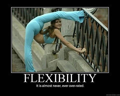 Thoughts on Flexibility and Openness