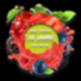 Neus-Obst-Logo---2020-2.png