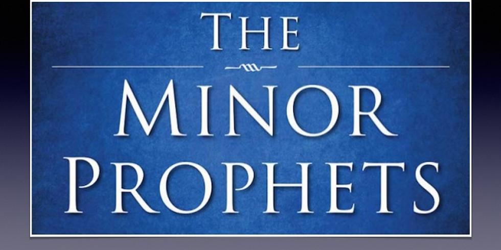 NEW SERIES: Minor Prophets