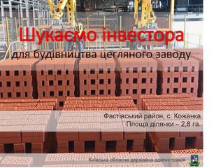 Шукаємо інвестора для будівництва цегляного заводу