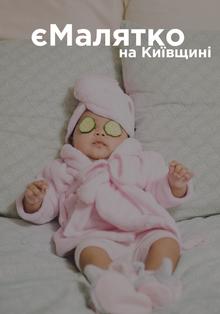 ЦНАПи Київщини готуються до запровадження послуги «єМалятко»