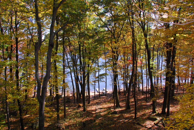 Just Listed: 2817 Shingle Camp Rd