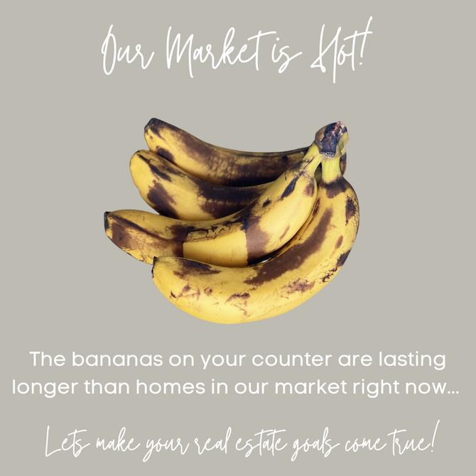 Market Monday - March 8, 2021 // 12:30 PM