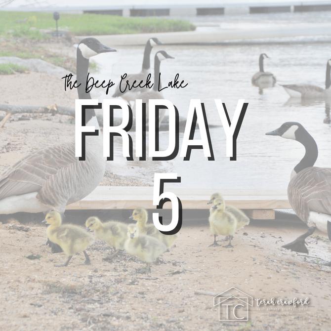 Deep Creek Lake Friday 5 - VOL. 2
