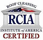 roof clean 2.jpg