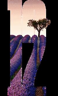 Number 12 France.png