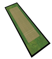 runner cricket.JPG