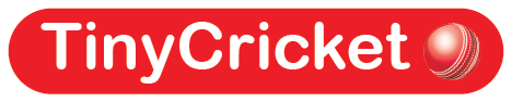cricket logo.png