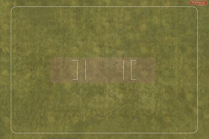 cricket grass top.JPG
