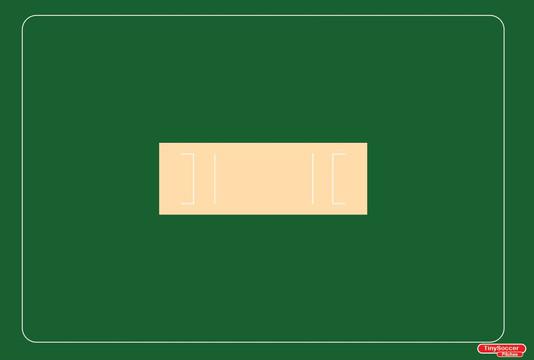cricketrunway.JPG