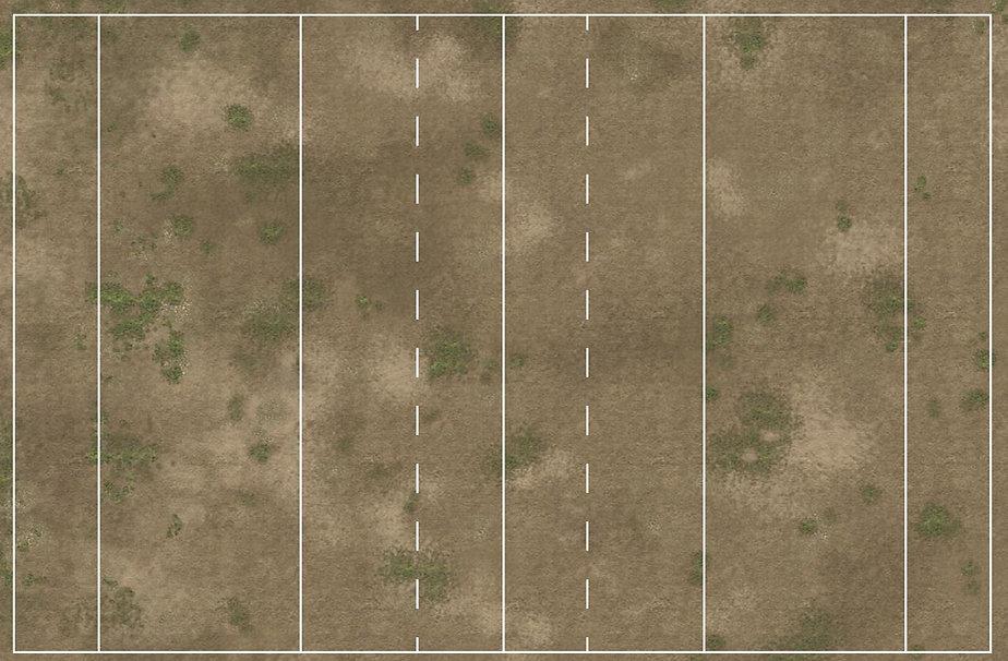 dusty grass tp.JPG
