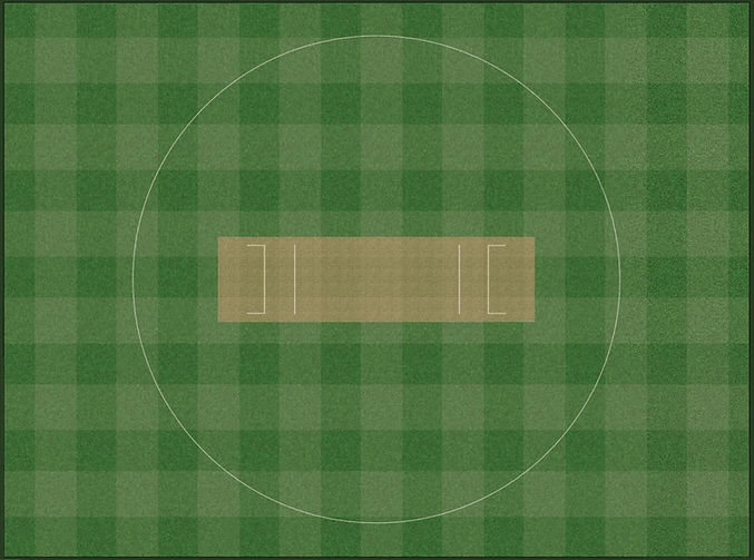 realistic cricket
