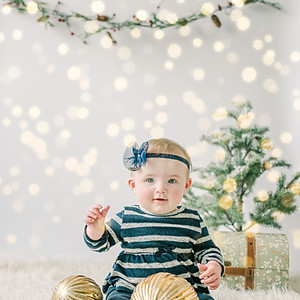 Sadie's First Christmas