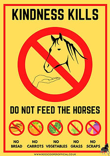 DO NOT FEED Posters (2).jpg