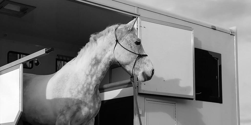 Rosca Horsemaship - Load Away Home Clinic
