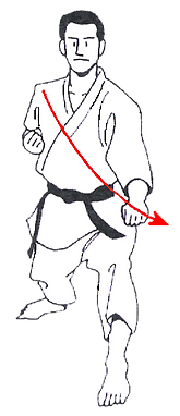 Lower Sweeping block, Midand, Karate, Goju-Ryu, Martial Arts, midrand, karate, goju-ryu, martial arts, Midrand, Karate, Goju-Ryu, Martial Arts, midrand, karate, goju-ryu, martial arts, Midrand, Karate, Goju-Ryu, Martial Arts, midrand, karate, goju-ryu,