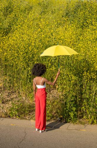 Umbrella045.jpg