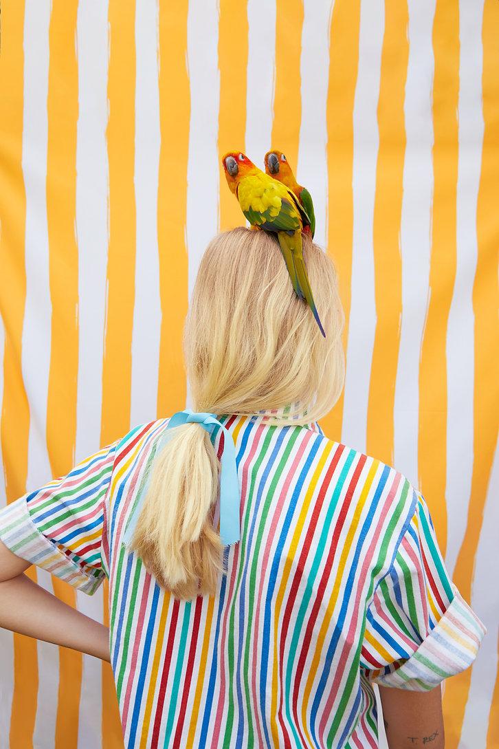 birds_final.jpg