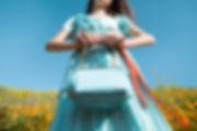 handbaglandscape.jpg