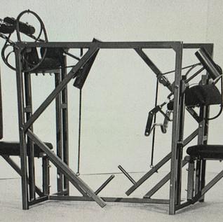 Plate Loaded Bi/Tri - Spider cams