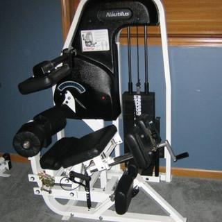 Nautilus Modified Low Back