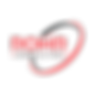 rohrconsulting-A1 transparent.png