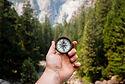 Hand mit Kompass im Wald