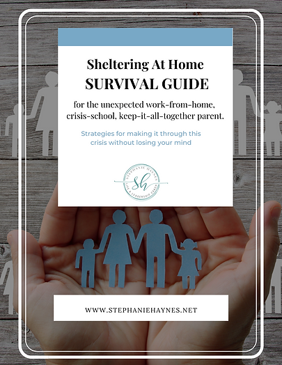 Sheltering At Home SURVIVAL GUIDE.png