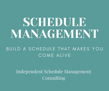 Independent Schedule Management Consulting