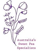 logo colour_edited.webp