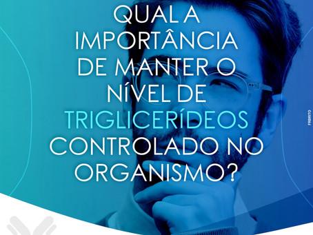 QUAL A IMPORTÂNCIA DE MANTER O NÍVEL DE TRIGLICERÍDEOS CONTROLADO NO ORGANISMO?