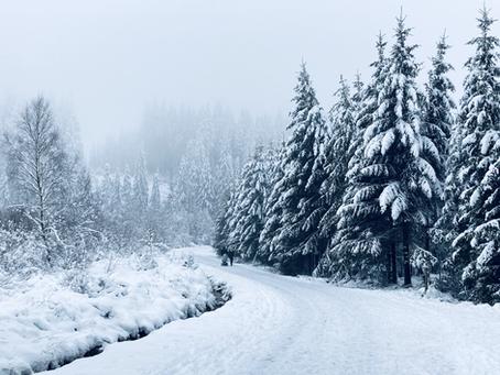 PlugPlug Hoge Venen: Winter Wonderland